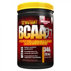 PVL Mutant BCAA 9.7 348 g fruit punch
